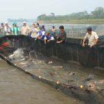 Lanzan diplomado en negocios acuícolas de paiche, gamitana y doncella