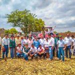 Promueven cultivo de frijol caupí en Lambayeque