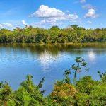 Minam: Áreas naturales protegidas de Madre Dios no se afectarán con declaratoria de emergencia