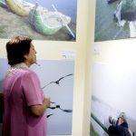 Muestra fotográfica sobre humedales y cambio climático