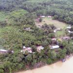 Vamos a detener la deforestación de bosques y recuperar principio de autoridad en Madre de Dios
