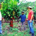 Realizan soporte técnico a los participantes posterradicaión en valle de Santa Rosa de Mishillo