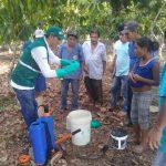Ucayali: Productores de cacao capacitados en uso de controladores biológicos