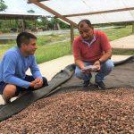 Goresam recomiendó elaborar mapa de sabores del cacao