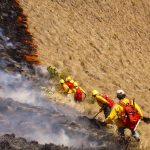 Bomberos forestales del Sernanp liderarán mitigación del incendio forestal cerca a Kuélap