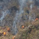 La Libertad: Trabajan en extinción de incendio forestal en caserío Choquizonguillo
