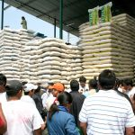 Productores podrán exportar arroz al mercado colombiano, exonerado del pago de impuestos