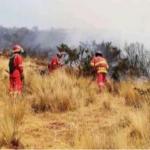 Prosiguen lucha contra incendios forestales en el Cusco