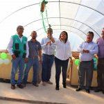 San Martín: Entregan módulo de post cosecha en Nueva Cajamarca