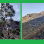 Continúan labores de extinción de incendio forestal en Cusco