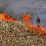Medidas para prevenir los incendios forestales