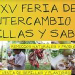 Madre de Dios: Agricultores participarán en la XV Feria de Intercambio de Semillas y Saberes