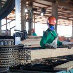 Serfor precisó gestión de recursos maderables