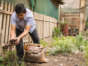 Crean huerto comunitario en Puente Piedra