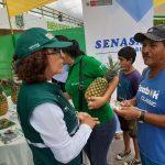 Presentan estrategias de atención sanitaria en Ucayali