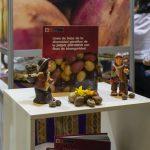 Presentan investigación sobre la diversidad genética de la papa peruana