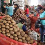 Publican reglamento de ley que busca disminuir las pérdidas de alimentos