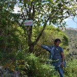 Presentarán plan para la restauración de ecosistemas y tierras degradadas