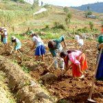 Solicitan creación del Ministerio de Desarrollo Agrario