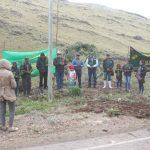 Ayacucho: Siembran pinos en campaña forestal lanzada en Chiara