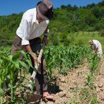 Conveagro pide urgente reestructuración del Ministerio de Agricultura