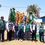 Tacna: Realizan campaña de recolección masiva de envases vacíos de plaguicidas