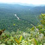 Cordillera del Cóndor en peligro por la minería ilegal