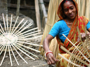El bambú para combatir el cambio climático: 5 maneras de cómo usarlo