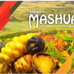 En los EE. UU. divulgan diversidad y ruta de la mashua