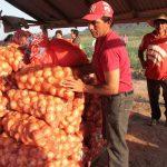 Perú y Bolivia retoman relación comercial para productos agropecuarios