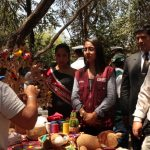 Zona recuperada del Santuario Histórico Bosque de Pómac fue restaurada al 100%