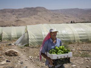 Suecia financia adaptación de agricultores al cambio climático