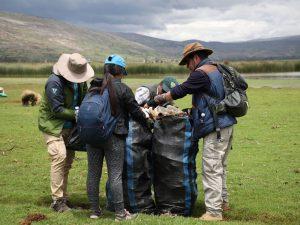 Jauja: Autoridades y vecinos desarrollaron la limpieza del humedal El Chocón