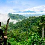 Destacan zonificación forestal de San Martín como respuesta ante el cambio climático