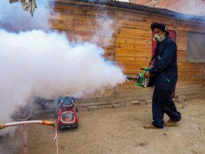 Nuevo genotipo del dengue agravaría epidemia regional