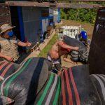 Vraem: Impulsan venta de 20 toneladas de cacao de calidad hacia Europa y Norteamérica