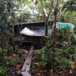 Loreto: Destruyen seis laboratorios clandestinos de producción de cocaína en el Putumayo