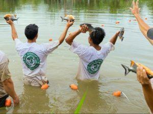 Junín: Transfieren S/ 800 mil para mejorar producción piscicultora en Río Negro