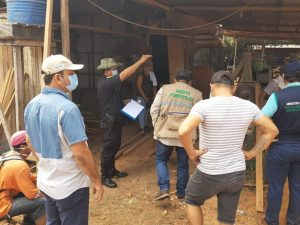 Ucayali: Decomisan 70 000 pies tablares de madera aserrada ilegal