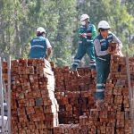 Intervienen 15 mil pies tablares de madera ilegal procedente de Ucayali