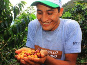 Lanzan II Concurso de Cafés Especiales – Valle del Monzón 2020