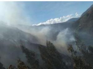 Extinguen incendios forestales en Junín y Pasco