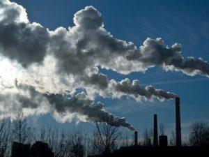 Elaboran base de datos mundial sobre intercambio de CO2, agua y energía entre biosfera y atmósfera