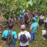 San Martín: Cacaoteros reciben soporte técnico remoto