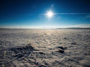 Ola de calor inusual en Siberia debido al cambio climático