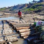Incautan 87 770 pies tablares de recurso forestal maderable en Ucayali