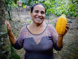Cultivo de cacao libre de deforestación gana terreno al cultivo de la coca