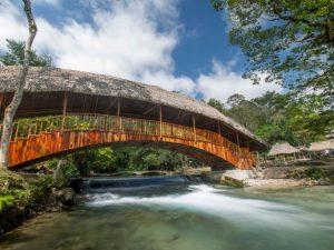 Región San Martín apunta a convertirse en un destino bioseguro