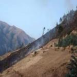 Extinguen dos incendios forestales en Apurimac