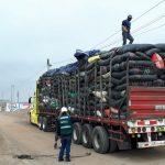 Decomisan tres toneladas de tara que eran transportados sin autorización